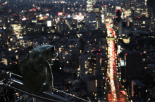 cphdox-2018 - Dreaming Murakami - Main still [525711]